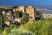 Alhambra Castle Towers Granada Andalusia Spain — Stock Photo