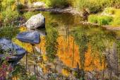Fall Colors Fire Reflection Wenatchee River Valley Near Stevens  — Stockfoto