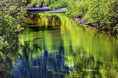 Summer Colors Green Reflection Wenatchee River Valley Near Steve — Stok fotoğraf