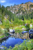 Fall Yellow Blue Green Colors Reflection Wenatchee River Valley  — Stok fotoğraf