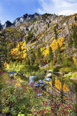 Fall Yellow Red Green Colors Reflection Wenatchee River Valley N — Foto de Stock