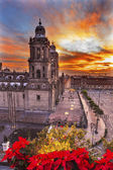 Metropolitan Cathedral Christmas Zocalo Mexico City Sunrise — 图库照片