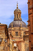 Stone Street Dome New Salamanca Cathedral Spain — Stock Photo