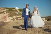 Young elegant wedding couple — Stok fotoğraf