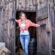 In the barn — Stock Photo #56134331