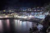 Coast of Madeira — Stock Photo
