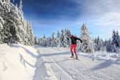 Cross-country skiing — Stock Photo