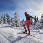 Cross-country skiing — Stock Photo #63061337
