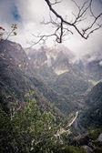 Mountain view on Madeira — Stock Photo