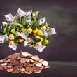 Money tree — Stock Photo #63490773