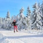Cross-country skiing — Stock Photo #65355823