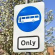 Bus only — Stock Photo #61586907