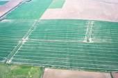 Crop fields — Stock Photo