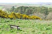 Lothian landscape — Stock Photo