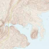Coastal Topographic Map — Stock Vector
