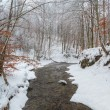 Постер, плакат: Winter river with snow covered banks