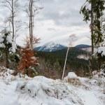 Winter mountains — Stock Photo #65402393