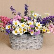 Basket with wildflowers — Stock Photo #73575793