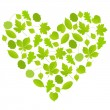 Green leaves heart symbol vector background ecology — Stock Vector #55500755