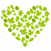 Green leaves heart symbol vector background ecology — Stock Vector