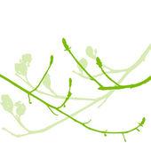 Vårens knoppar, mjuka blad och grenar vektor bakgrund ecolog — Stockvektor