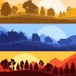 Forest wood mountain background vector set concept landscape — Stock Vector #80486412