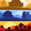 Forest wood mountain background vector set concept landscape — Stock Vector #80486460