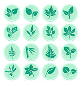 Green Leaf Flat Icons — Stockvektor