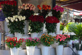 Different bouquets of roses available for sale — Stock Photo