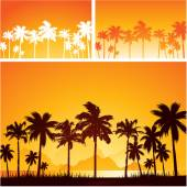 Summer sunset background with palm trees — Stock Vector