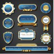 Vintage blue gold frame vector banners — Stock Vector #63991741
