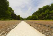 Paved road. — Stock Photo