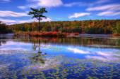 Podzim krajina. — Stock fotografie