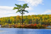 Fall landscape. — Stock Photo