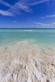 Caribbean beach with crystal water. — Stock Photo