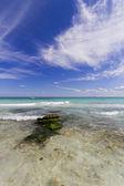 Kristal su ile Karayipler beach. — Stok fotoğraf