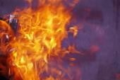 Burning firewood in mongale — ストック写真