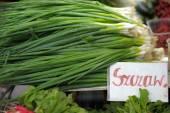 Fresh spring onions — Stock Photo