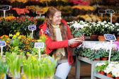 Genç kadın Paris çiçek Market — Stok fotoğraf