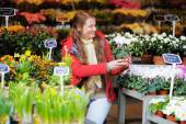 Young woman at Parisian flowers market — Stok fotoğraf