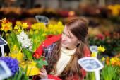 Młoda kobieta wybierając świeże kwiaty na rynku — Zdjęcie stockowe