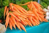 Fresh bio carrots on farmer market — Stock Photo