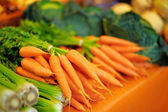Fresh healthy bio fennel and carrots — Stock Photo