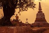 Thai temple sunset, the historical temple in Ayutthaya, Thailand — Stockfoto