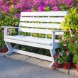 Bench in the park — Stock Photo #66242895