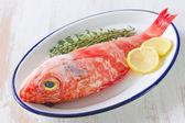 Czerwona ryba z ziołami i cytryną na danie — Zdjęcie stockowe