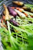 Rainbow carrots — Stock Photo