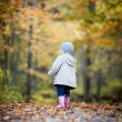 Little girl in Autumn fun — Stock Photo #57978015