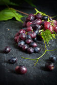 Red grapes on dark background — Stock Photo