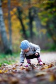 Little girl gather leaves — Stock fotografie